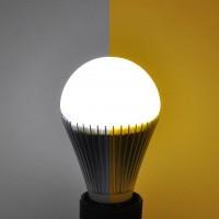 Dual Color Temperature A19 LED Light Bulb E27 Screw Base (Final Sale)