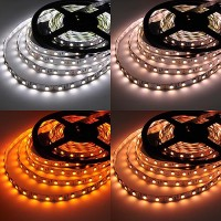 12-Volt Color Temperature Adjustable Flexible Ribbon with 300xSMD5050 LEDs