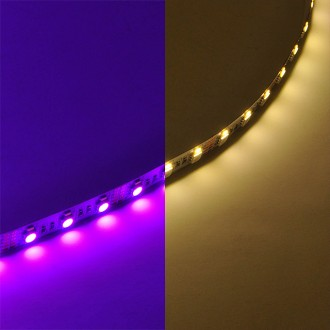 12-Volt Color-Changing RGBW Flexible LED Ribbon Strip Light with 300xSMD5050 and 300xSMD3014
